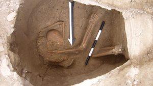 DNA discovery identifies living descendants of Biblical Canaanites